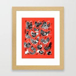 Lil Cluckers Framed Art Print