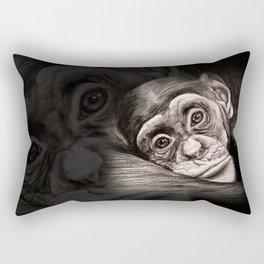 Pondering a Future Rectangular Pillow