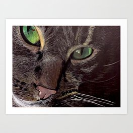 House Cat: Otto the Rescue Cat Art Print