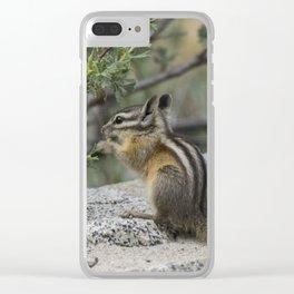 Chipmunk Feeding Clear iPhone Case