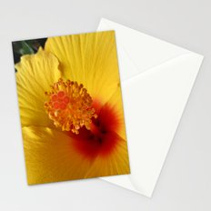 Hibiscus macro Stationery Cards