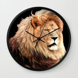 Sleepy Lion (Panthera leo) Wall Clock
