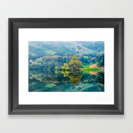 Reflections of Spring Framed Art Print