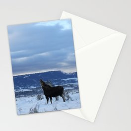 Moose at Antelope Flats Stationery Cards