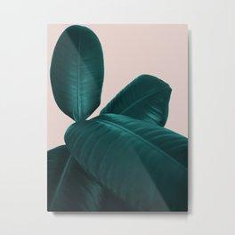 Ficus Elastica #4 #art #society6 Metal Print
