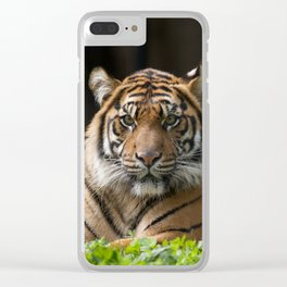 Look into my eyes by Teresa Thompson Clear iPhone Case