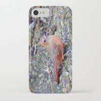 cardinal iPhone & iPod Cases featuring Cardinal by MyLove4Art