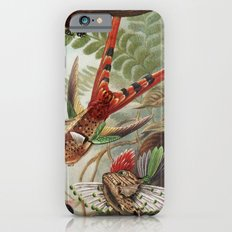 Flying Fish iPhone 6s Slim Case