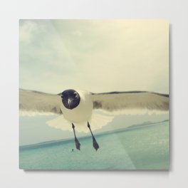 bird 3/3 by akashidan Metal Print