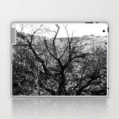 Castle Tree Laptop & iPad Skin