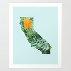 California Poppy in NorCal - State Flower Art Print