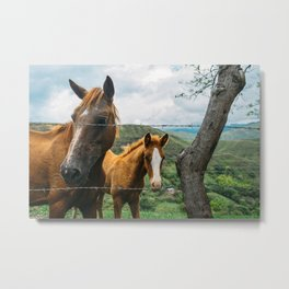 Mother and Daughter (Colombia) Metal Print