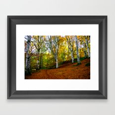 Autumn Trees Woodland Framed Art Print