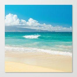 Hawaii Beach Treasures Canvas Print