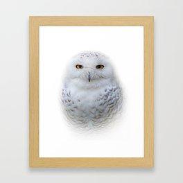 Dreamy Encounter with a Serene Snowy Owl Framed Art Print