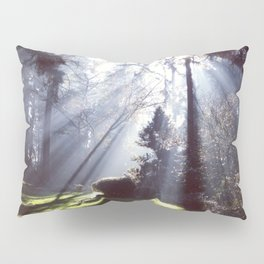 Sun Beams Pillow Sham