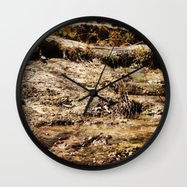 Little Pedernales Flowing Wall Clock