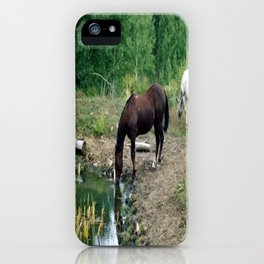 Horse by the Stream iPhone Case