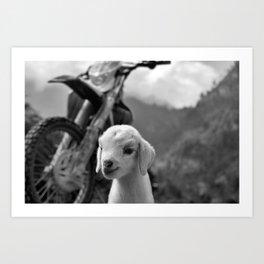 Dirt Bike Kid Art Print
