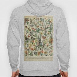 Adolphe Millot Vintage Fleurs Flower 1909 Hoody
