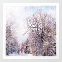 winter trees in sunlight by irislehnhardt