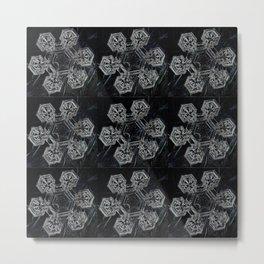 Flocons de Neige Metal Print
