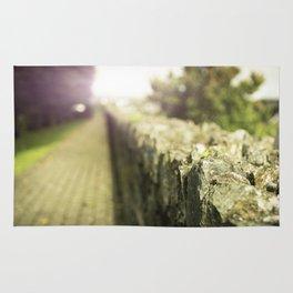 A Walk In The Garden Rug