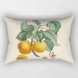 Vintage Botanical Illustration - Abricot-Peche Antoine Poiteau Rectangular Pillow