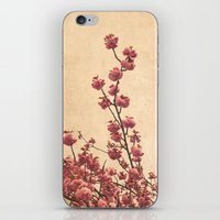 cherry blossoms iPhone & iPod Skins featuring cherry blossoms by Iris Lehnhardt
