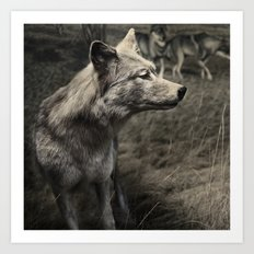 Tom Feiler Wolf Art Print
