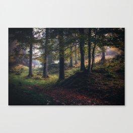The color dance Canvas Print