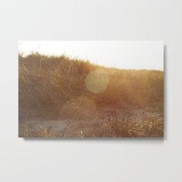 Montauk Sand Dune Sunflare Metal Print