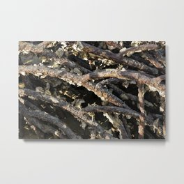deep rooted Metal Print
