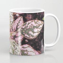 Green veined pink leaves Coffee Mug