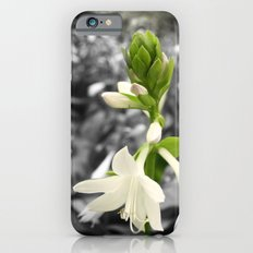 Green & White iPhone 6s Slim Case