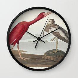 Scarlet Ibis from Birds of America (1827) by John James Audubon (1785 - 1851 ) etched by Robert Havell (1793 - 1878) Wall Clock