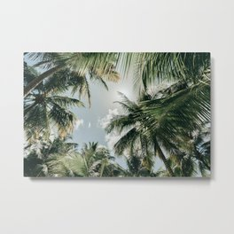 Tropical vibes - Palmtrees from below, Saona Island, Dominican Republic (Caribbean) | Nature Travel Photography Metal Print