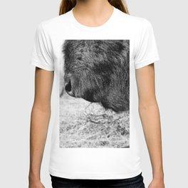 Buffalo Beard T-shirt