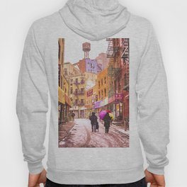 The Colors of Winter - New York City Hoody