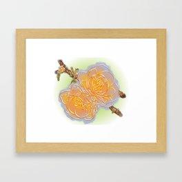Quince 2.2 Framed Art Print