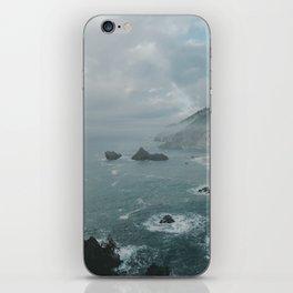 Faded ocean life iPhone Skin
