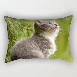 Curious Kitten Rectangular Pillow
