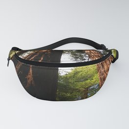 Redwood Tree Tops Fanny Pack