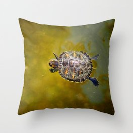 The journey of a baby turtle Throw Pillow