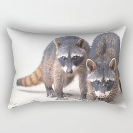 Cute wild Racoons in Costa Rica Rectangular Pillow