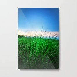 The first state Metal Print