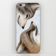 Vanishing Canadian Canids iPhone & iPod Skin