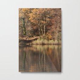 Golden Pond - 1 Metal Print