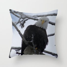 Bald Eagle at 12 Below -- Soldotna, Alaska Throw Pillow