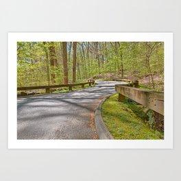Rock Creek Winding Road Art Print